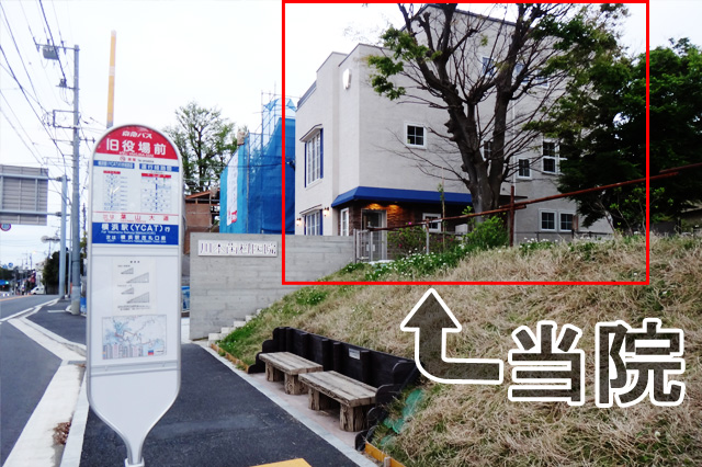 川本歯科医院 バス停「旧役場前」